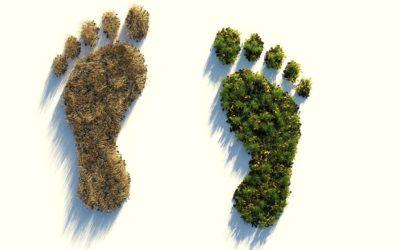 11 astuces pour réduire l'empreinte carbone en entreprise