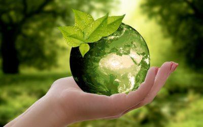 L'impact écologique de la consommation et production de papier